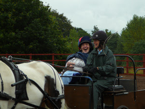 A disabled drivers competing in a driven handy pony competition